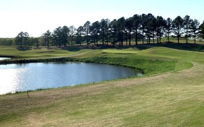Eagle Chase Golf Club Review – 4/5/2020