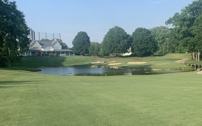Birkdale Golf Club Review – 6/17/2020