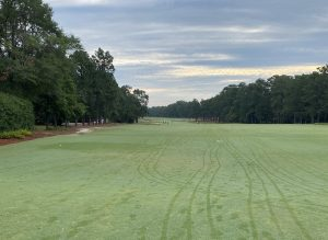 golf course fairway in Pinehurst, NC