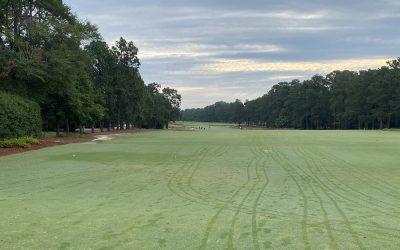 Sandhills Earn Verified Status as Home of American Golf